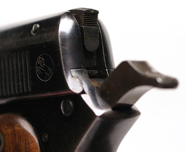 Model 1900 Sight Safety in Safe position